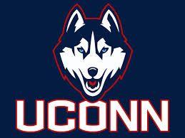 Image result for uconn husky logo.