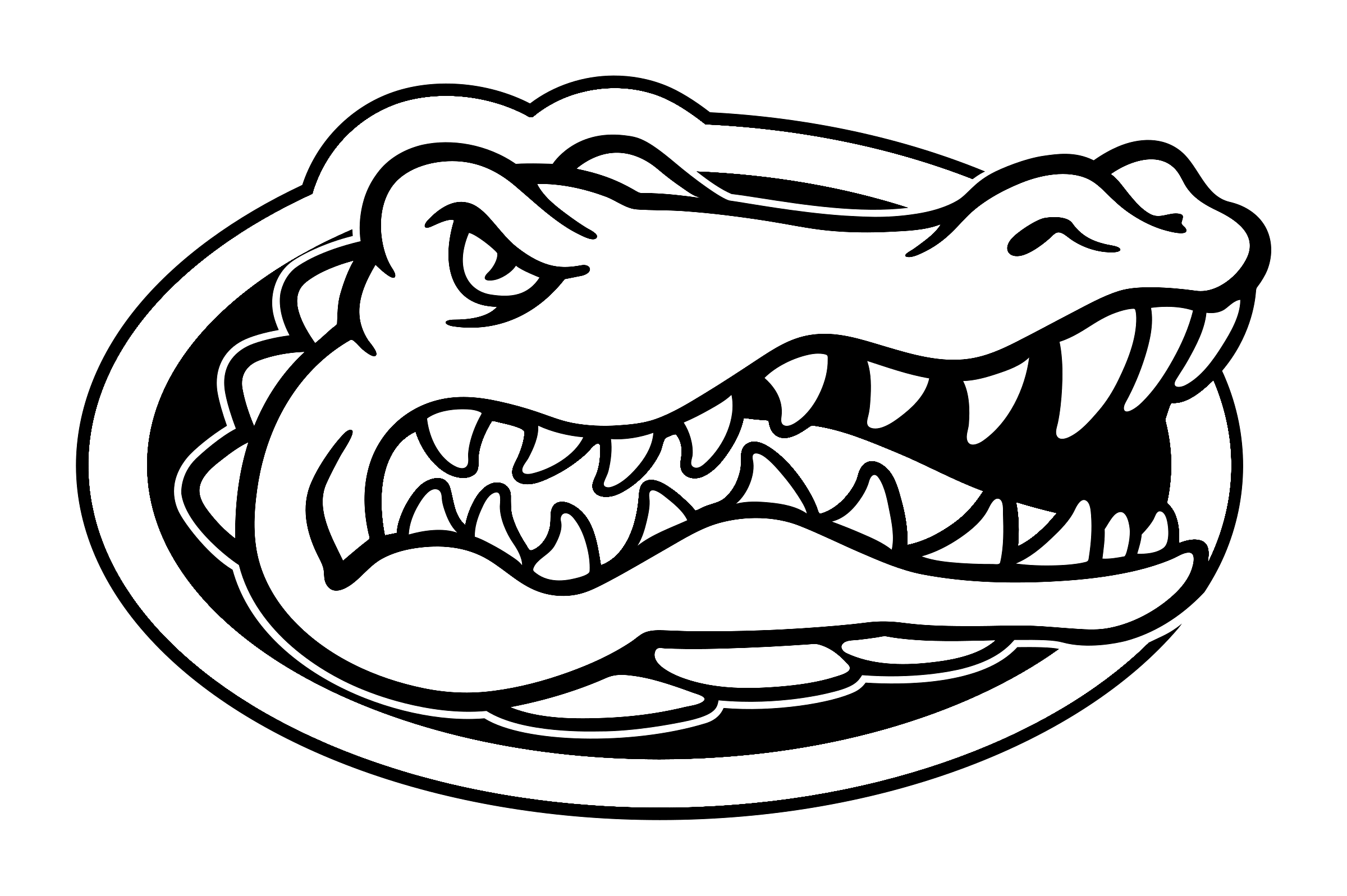 Florida Gators football Alligator Coloring book Florida.