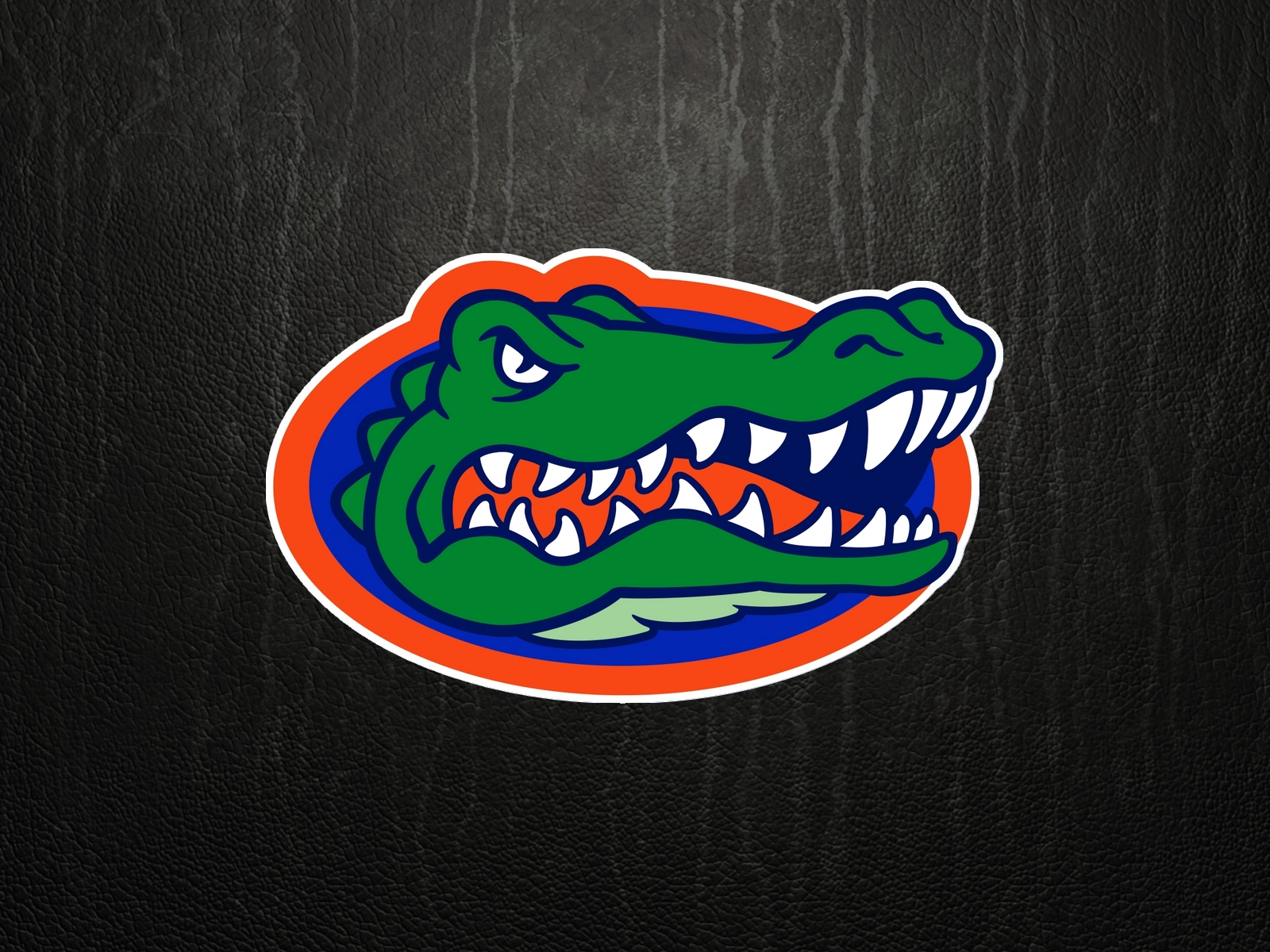 Free download Gators Logo Florida Gator Wallpaper Cartoon.