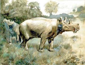 Mammals 4 Clip Art Download.