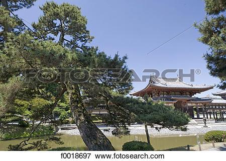 Picture of Japan, Kyoto, Uji, Biyodo.