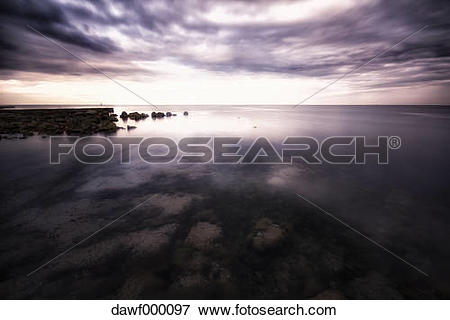 Picture of Croatia, Istria, coast at Umag dawf000097.