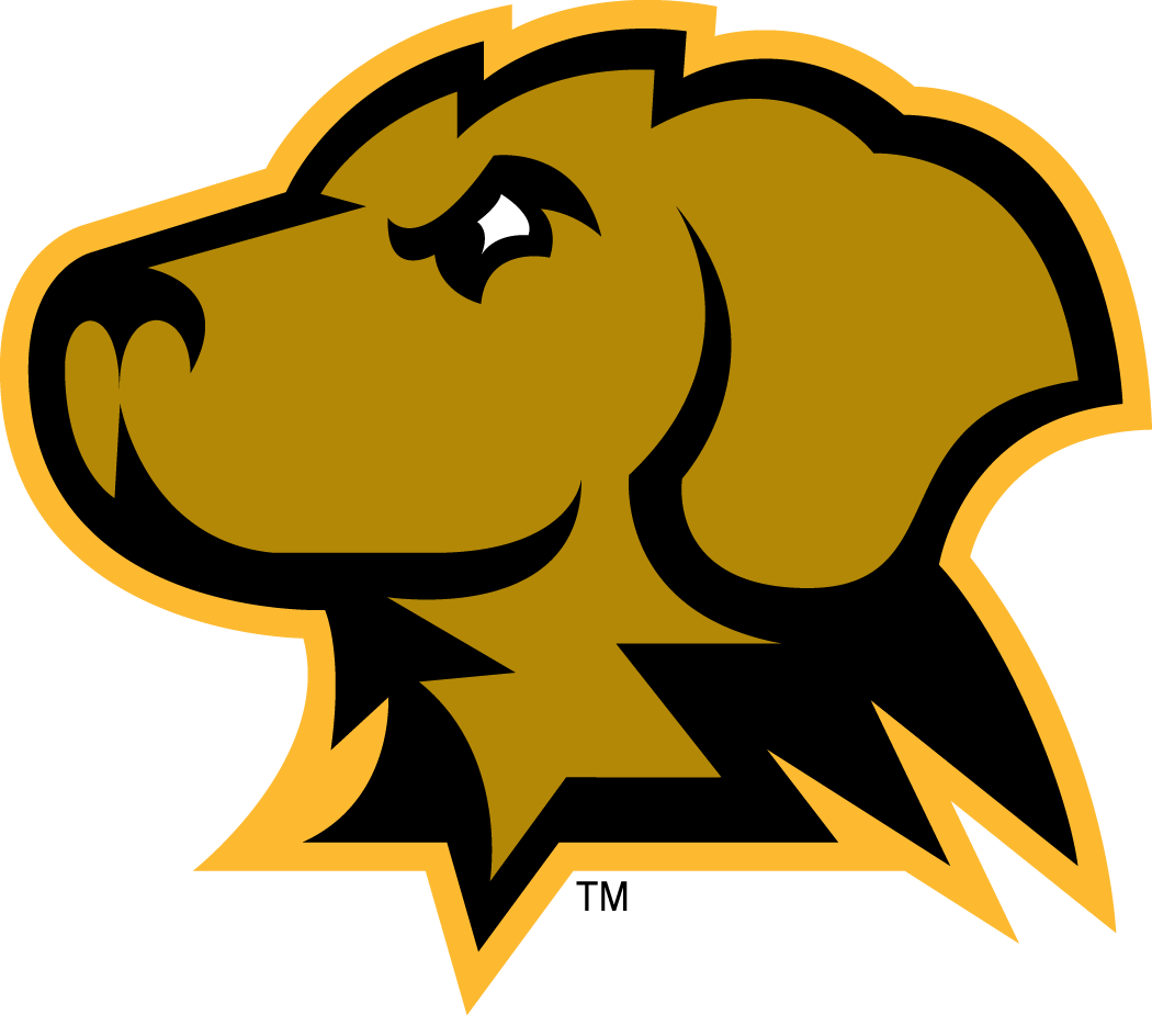 UMBC Retrievers Secondary Logo.