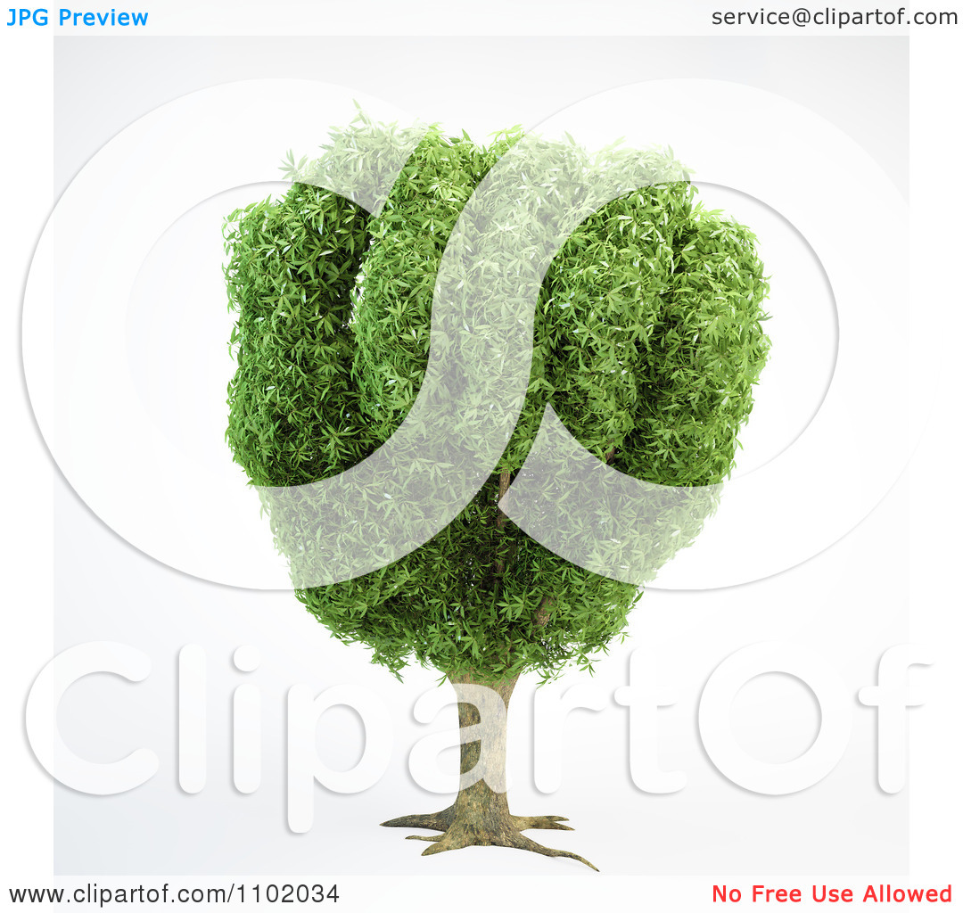 Clipart 3d Tree With A Fist Shaped Canopy.