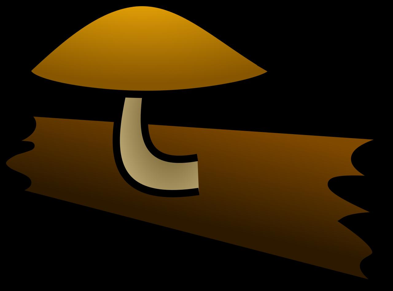 File:Saprotrophic fungus.svg.