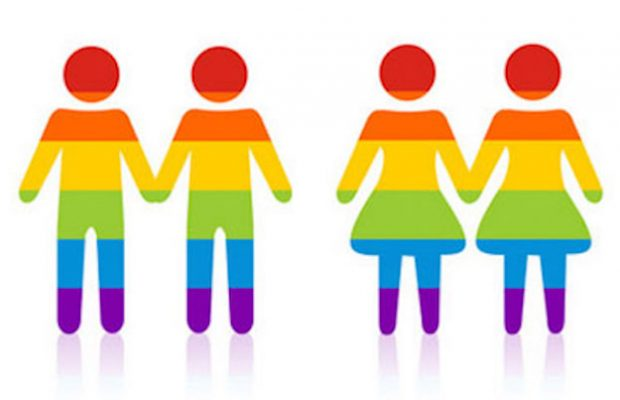 SSM: High Court\'s unanimous decision gives Government all.