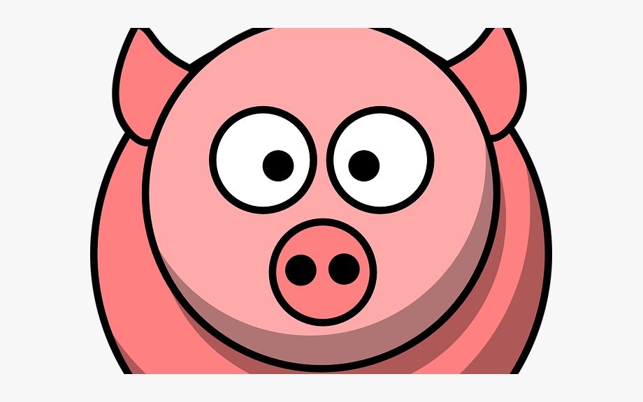 Quiz On The Unbelievable Top Secret Diary Of Pig.