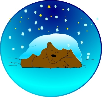 Sleeping Bear Under Stars With Snow.