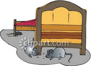 Mice Under A Bed.
