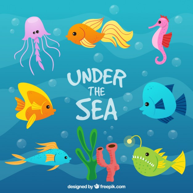 Under The Sea Vectors, Photos and PSD files.