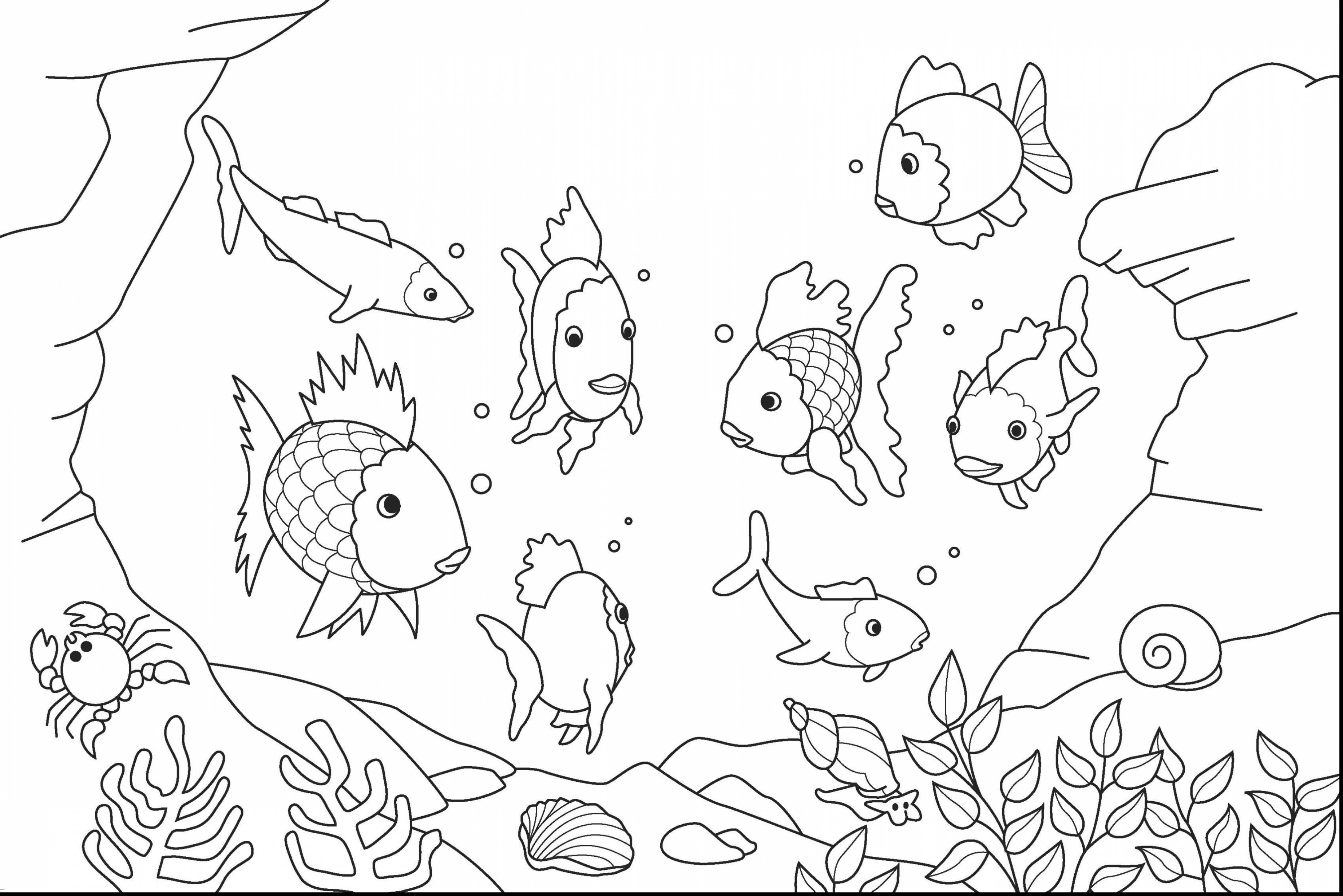 Under The Sea Fish Coloring Pages.