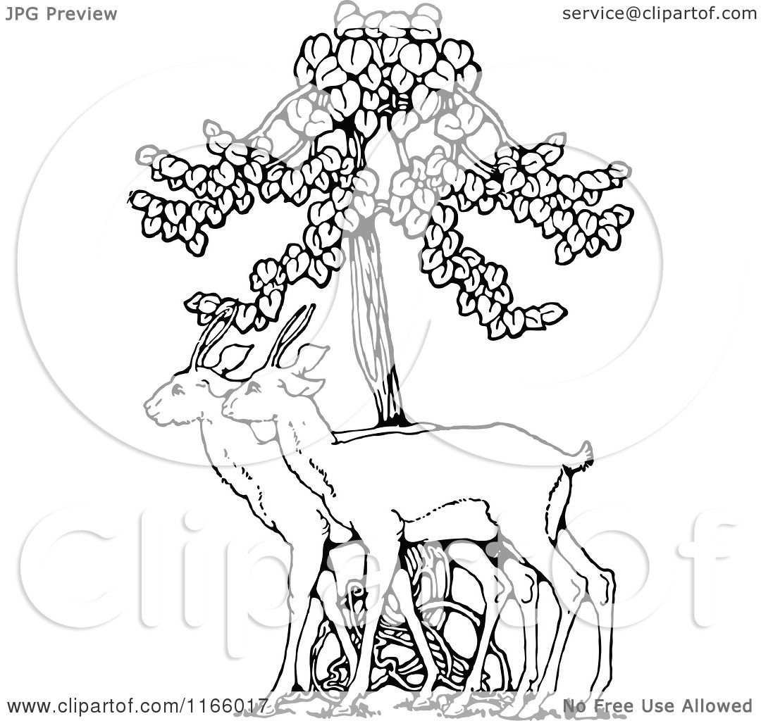 Clipart of Retro Vintage Black and White Deer Under a Tree.