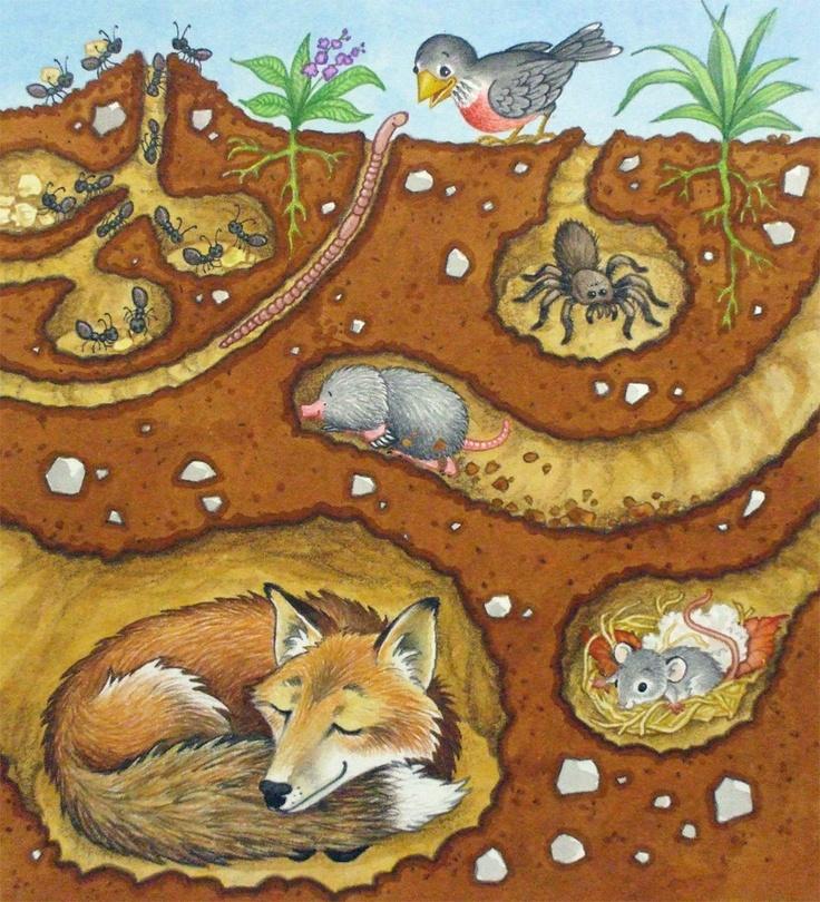 Underground Animal Clipart.