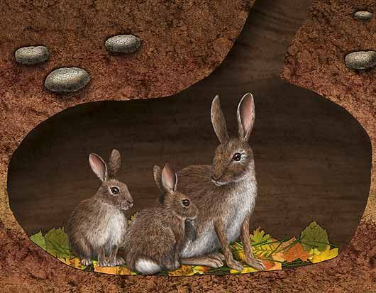 rabbits in an underground burrow with leaves on the floor.