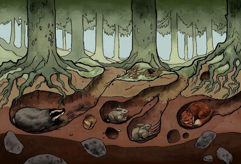 Underground Animals Clipart.