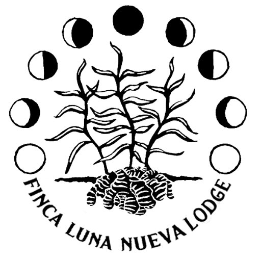 Finca Luna Nueva on Twitter: \