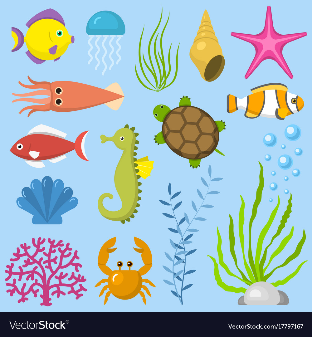 Set aquatic funny sea animals underwater creatures.