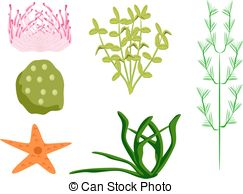 Vector of Underwater Plants.