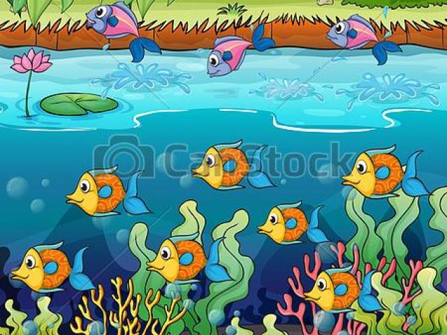 Pond clipart underwater Transparent pictures on F.