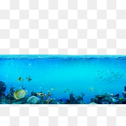 Underwater Png, Vectors, PSD, And Clipar #331682.