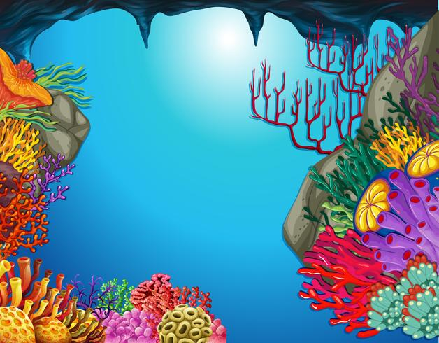 Underwater scene with coral reef in cave.