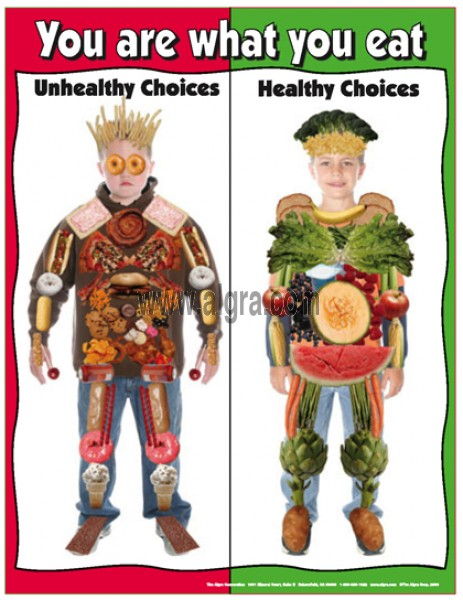 Say no to Junk Food Poster for school.
