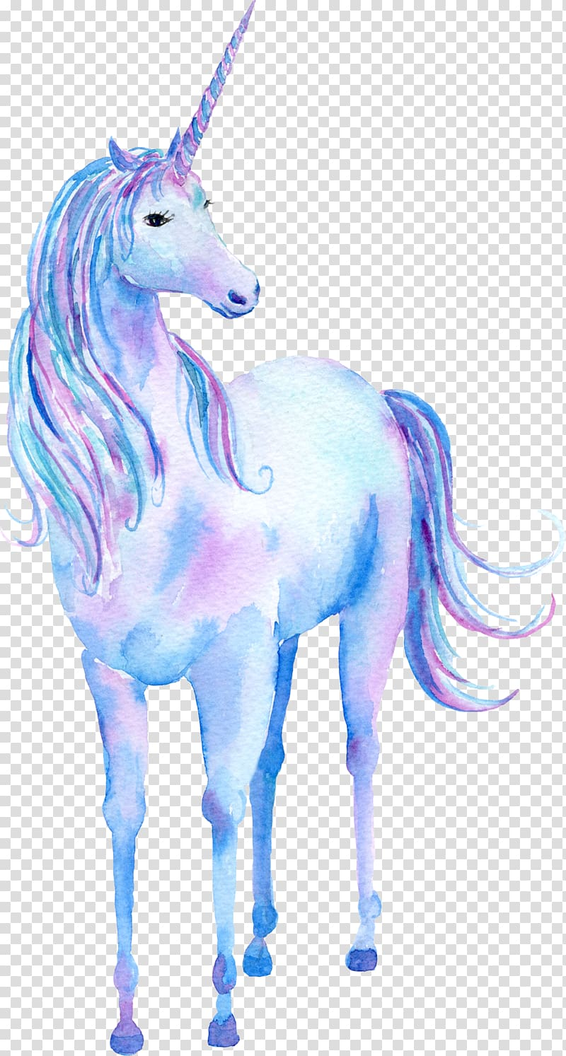 White and purple unicorn , Unicorn Watercolor painting.