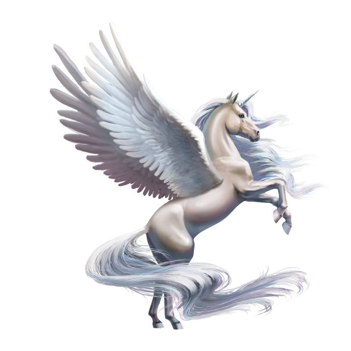 Unicorn PNG Images Free Download searchpng.com.