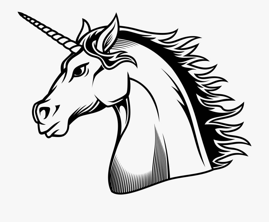 Desenho Preto E Branco Unicornio Clipart , Png Download.