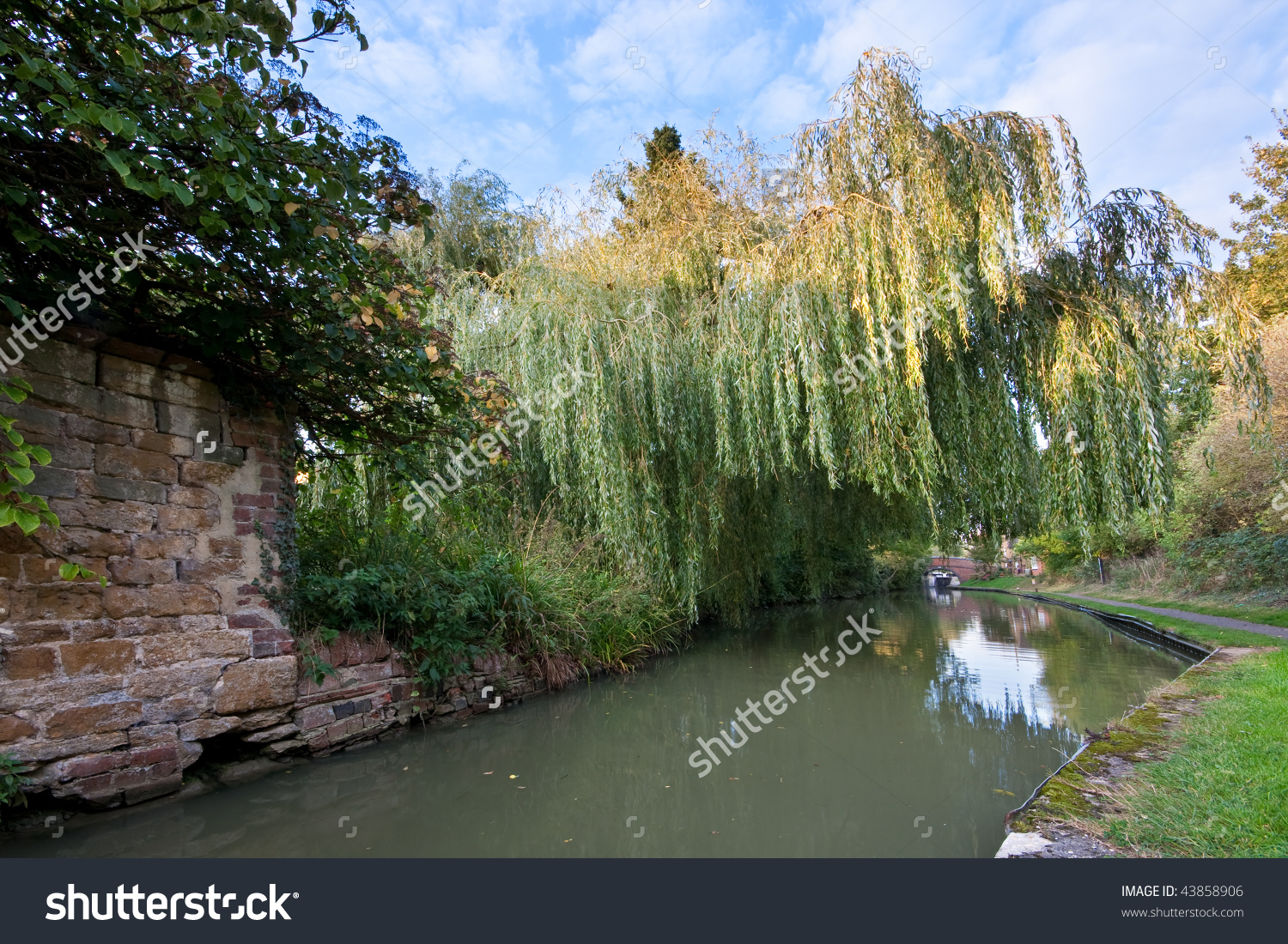 The Grand Union Canal Passes Under A Weeping Willow Tree On.