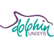Working at Dolphin Unisys.