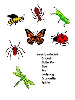 Insect Clip Art.