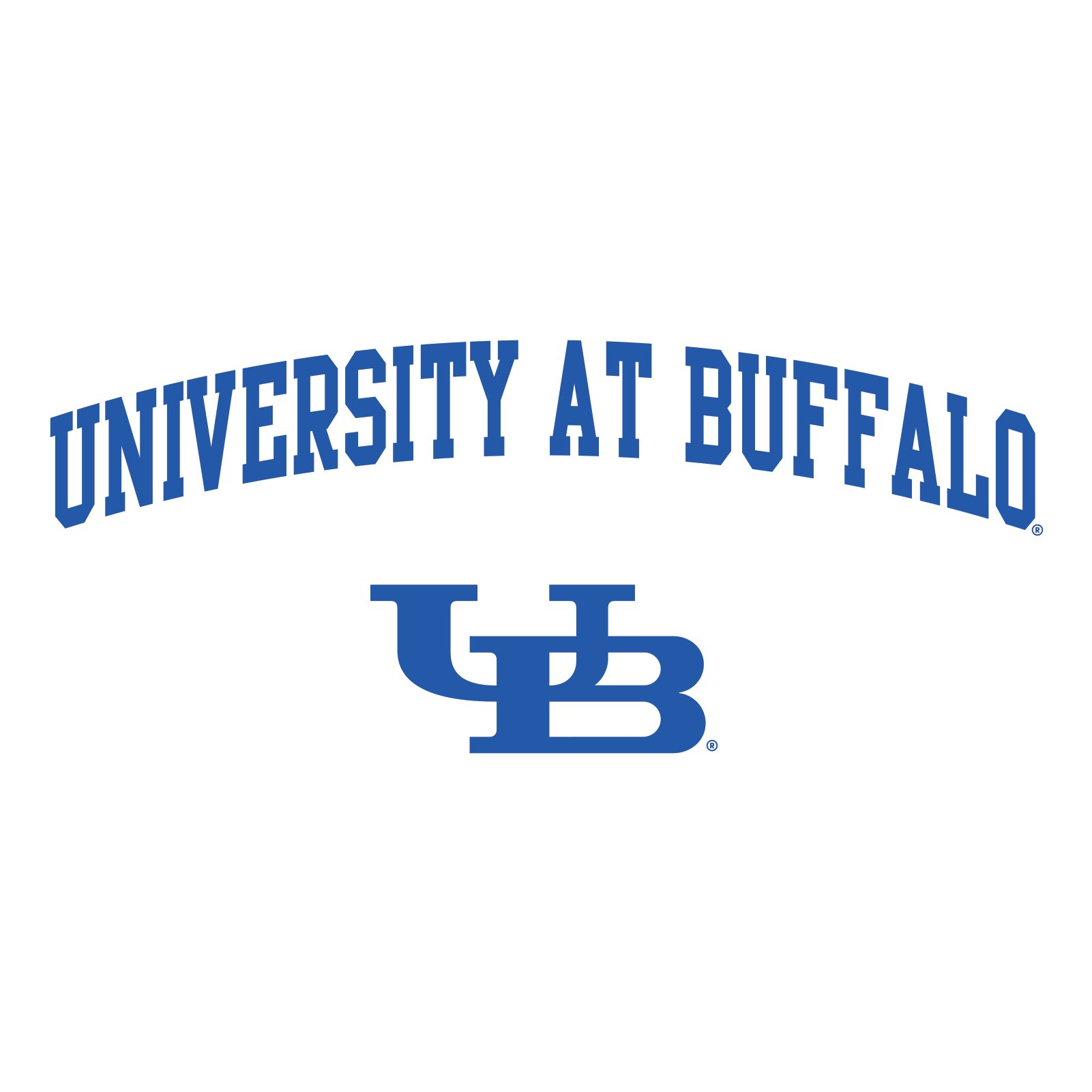 University at Buffalo Bulls Arch Logo T Shirt.