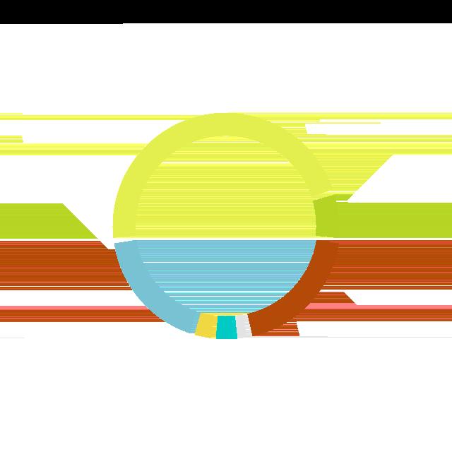 Mannheim Executive MBA.
