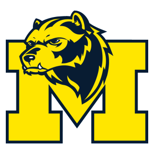 michigan wolverines mascot.