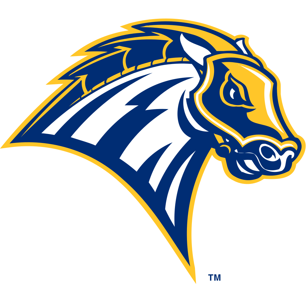 University of New Haven Colors.