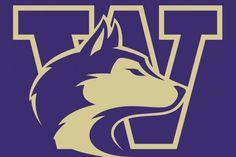 97 Best Washington Huskies images.