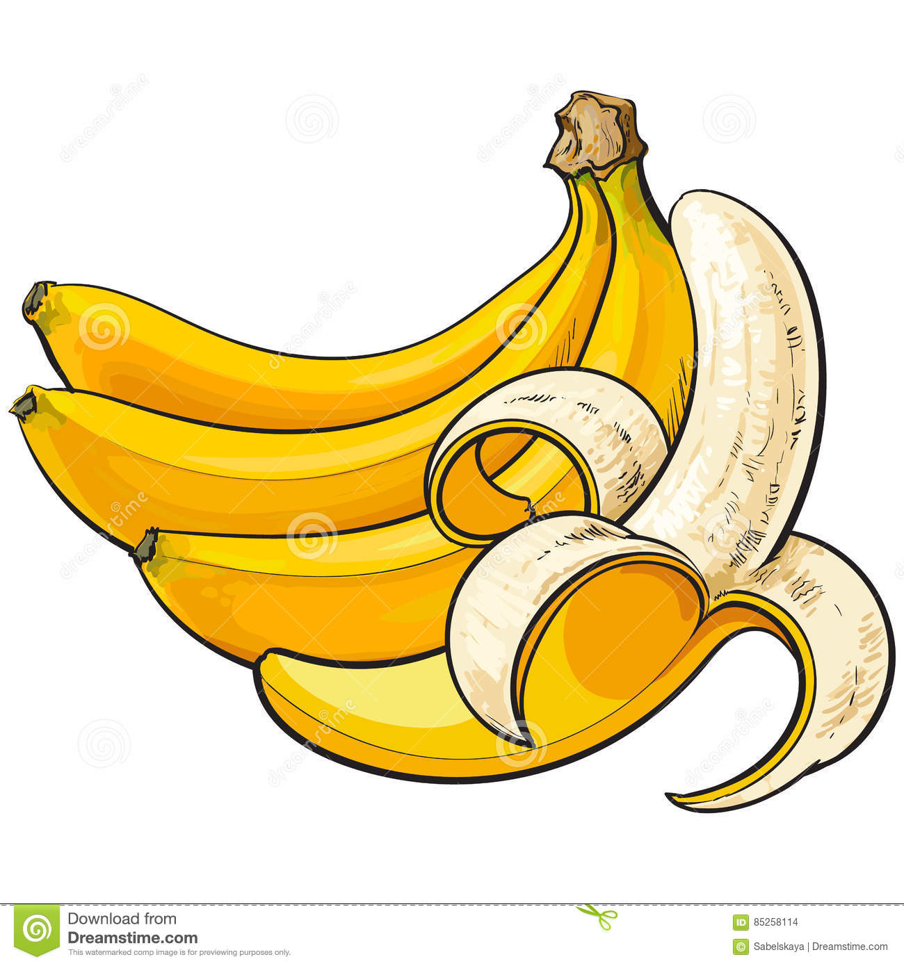 Two Ripe Bananas, One Open, Another Unopened And Unpeeled Stock.