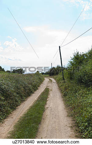 Stock Photography of Unpaved road amidst plants u27013840.