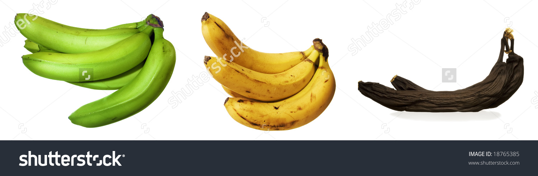 Bananas Unripe Ripe Rotten Stock Photo 18765385.