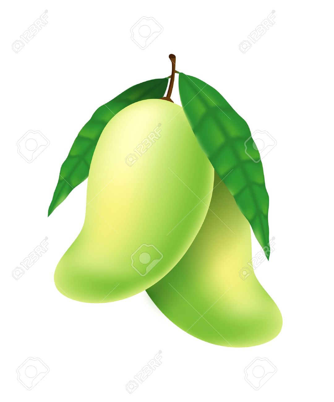 Unripe clipart 20 free Cliparts   Download images on ...