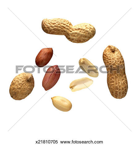 Stock Image of Shelled and Unshelled Peanuts x21810705.