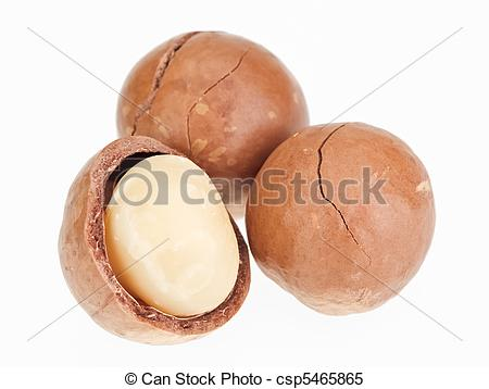 Stock Images of Shelled and unshelled macadamia nuts isolated on.