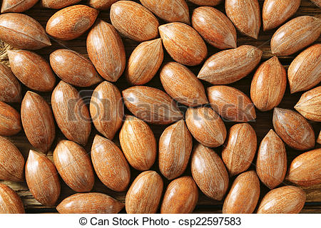 Pictures of Unshelled pecans.
