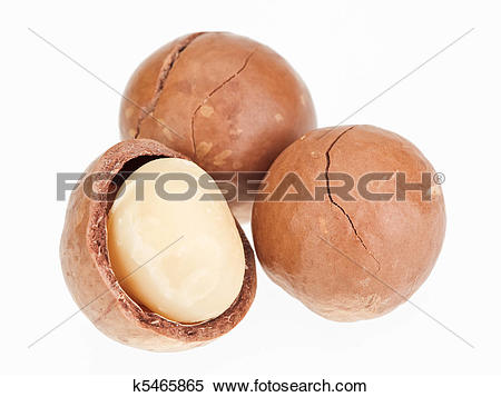Stock Image of Shelled and unshelled macadamia nuts isolated on.
