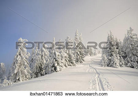 "Stock Photo of ""Ascent tracks and deep snow."