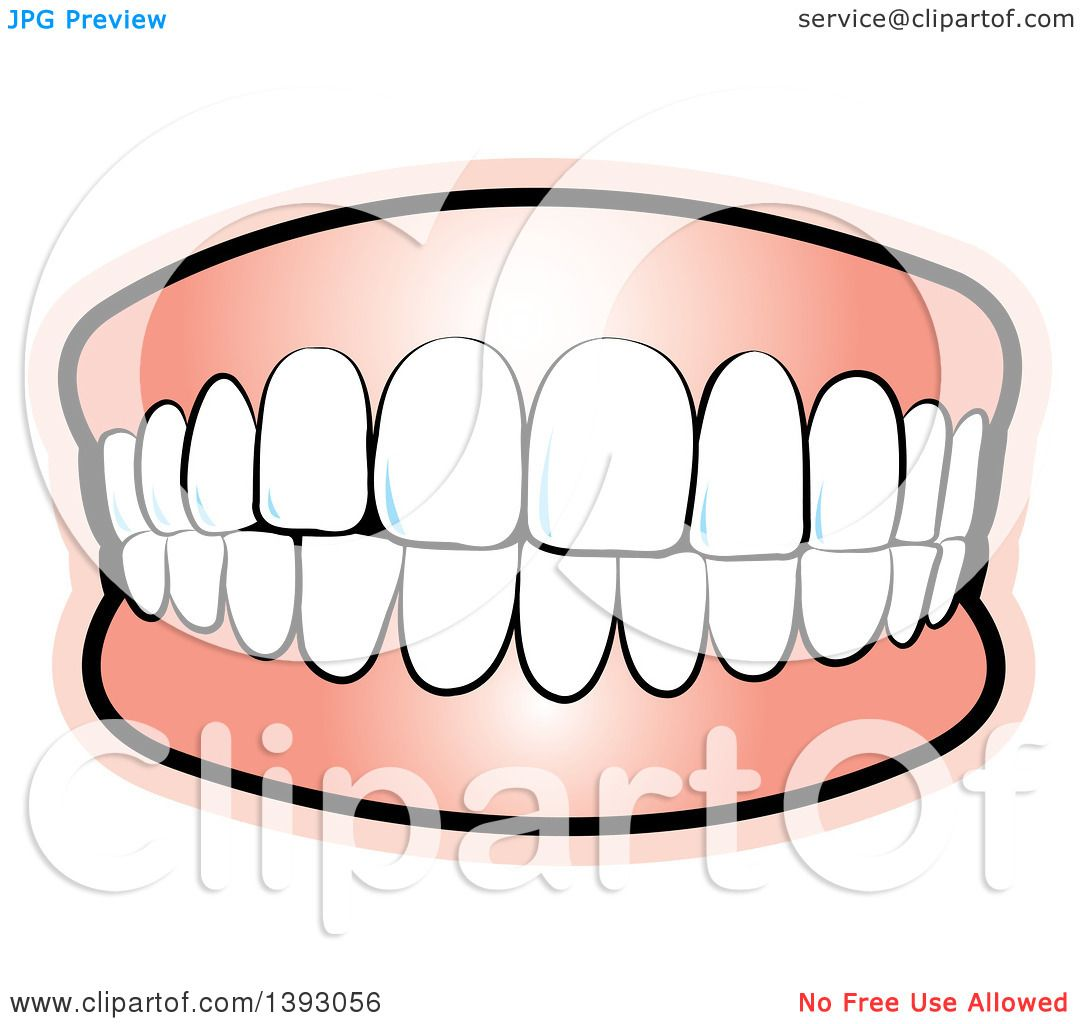 Clipart of Upper and Lower Teeth.