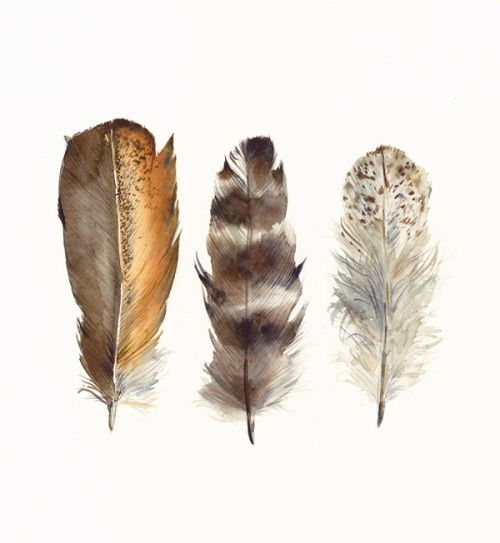 1000+ images about Arrows & Feathers on Pinterest.