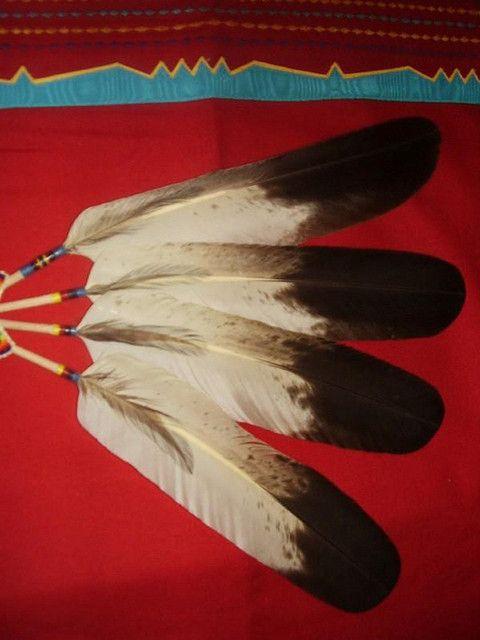 eagle feathers..