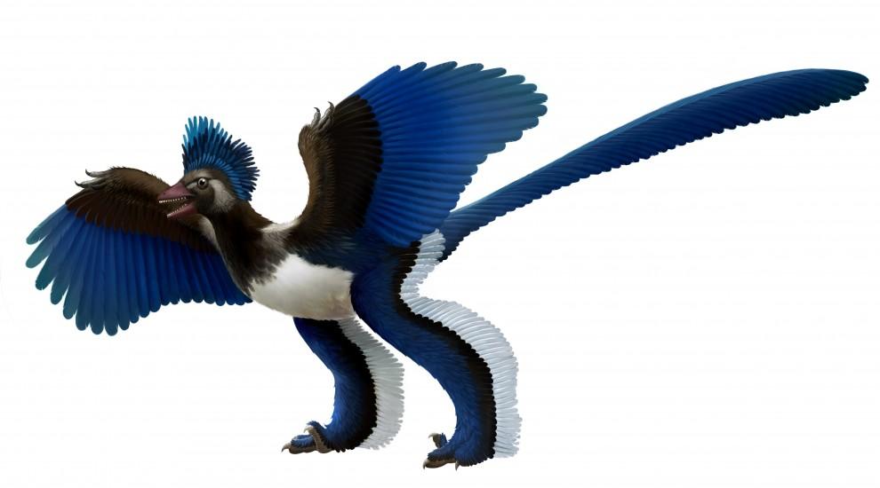 Upper Jurassic Dinosaur: the Artistic Reconstruction.